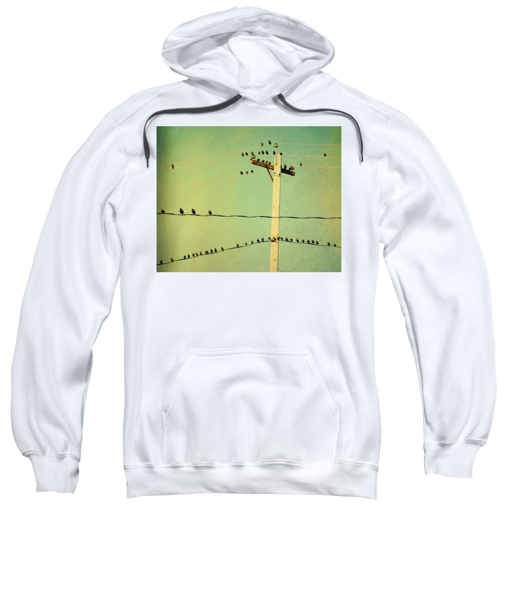 Retro Color Sweatshirt featuring the photograph Tweeters Tweeting by Gothicrow Images