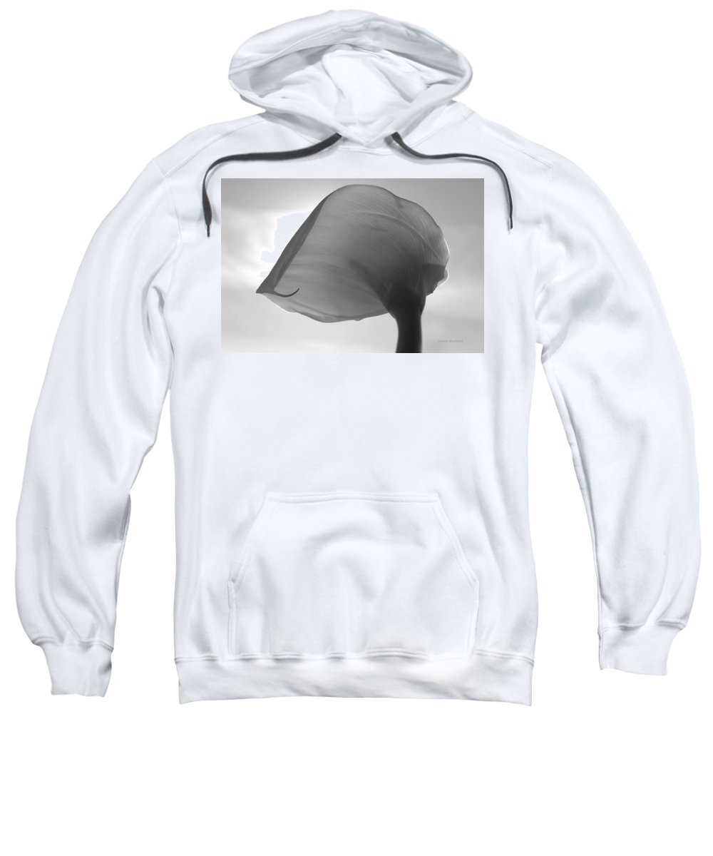 Flower Sweatshirt featuring the photograph Up In The Air by Donna Blackhall