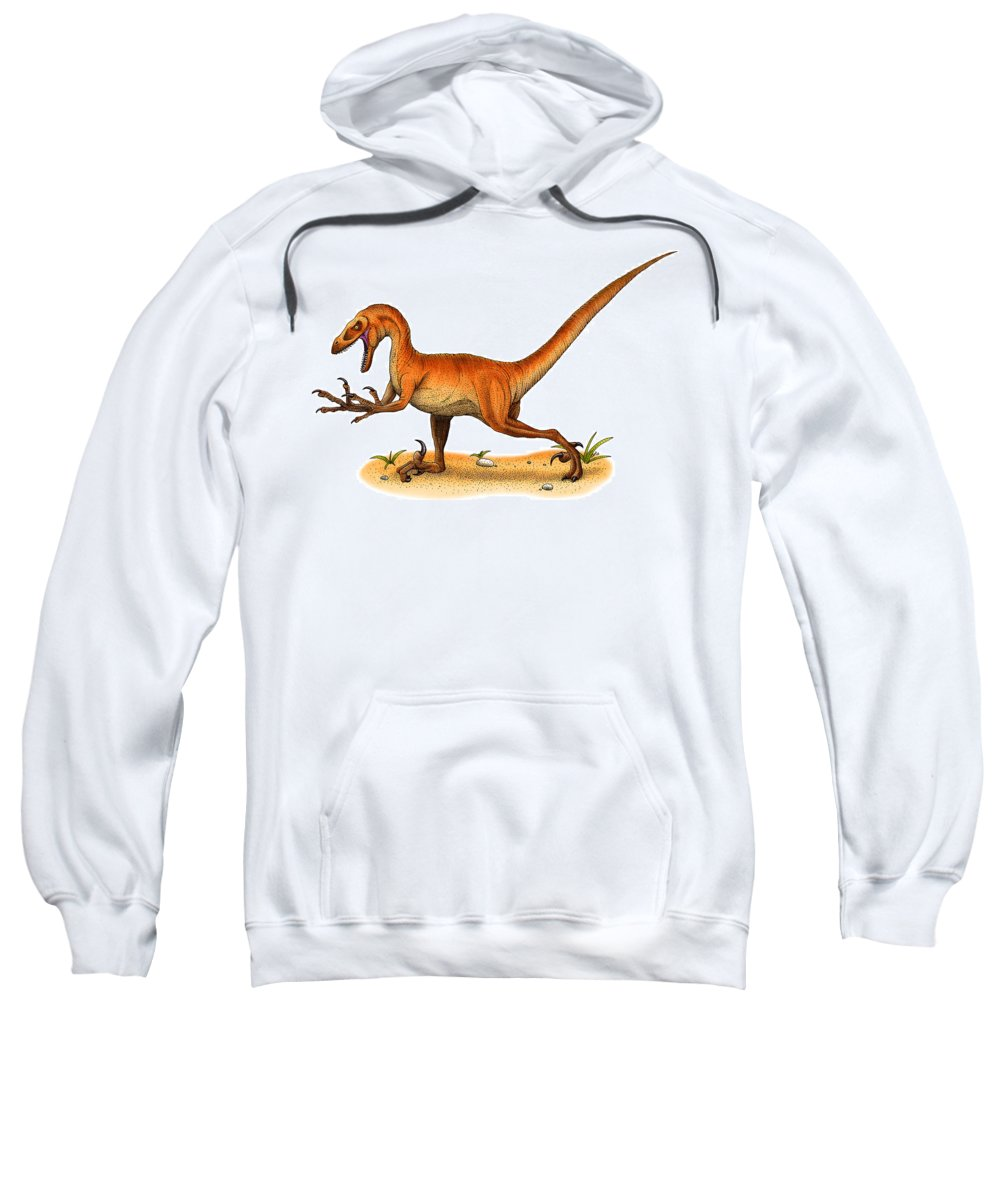 Reptile Sweatshirt featuring the photograph Velociraptor by Roger Hall