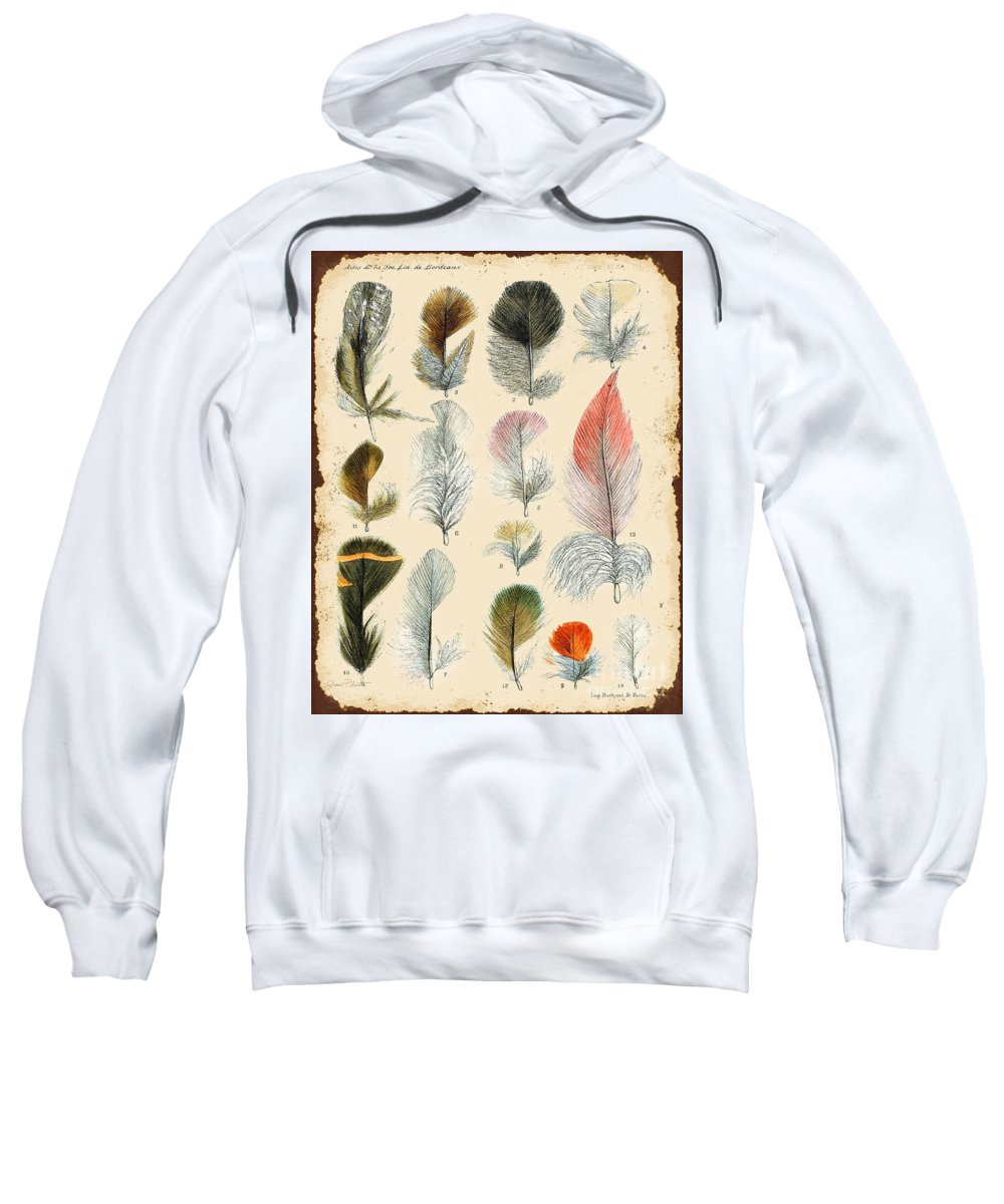 Digital Art Sweatshirt featuring the digital art Vintage Feather Study-b by Jean Plout
