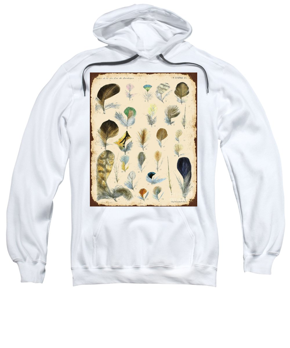 Digital Art Sweatshirt featuring the digital art Vintage Feather Study-c by Jean Plout