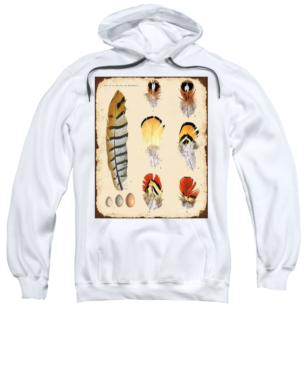 Digital Art Sweatshirt featuring the digital art Vintage Feather Study-d by Jean Plout