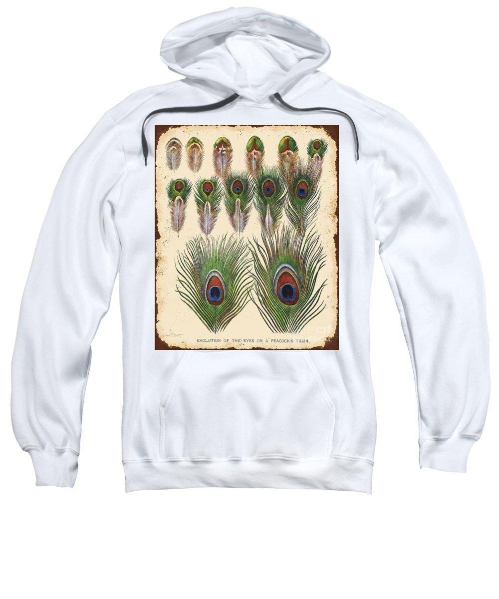 Digital Art Sweatshirt featuring the digital art Vintage Feather Study-jp2084 by Jean Plout
