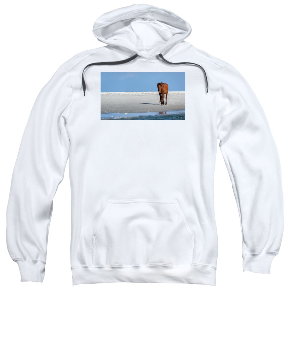 Wild Sweatshirt featuring the photograph Walk On The Beach by Sandy Brooks