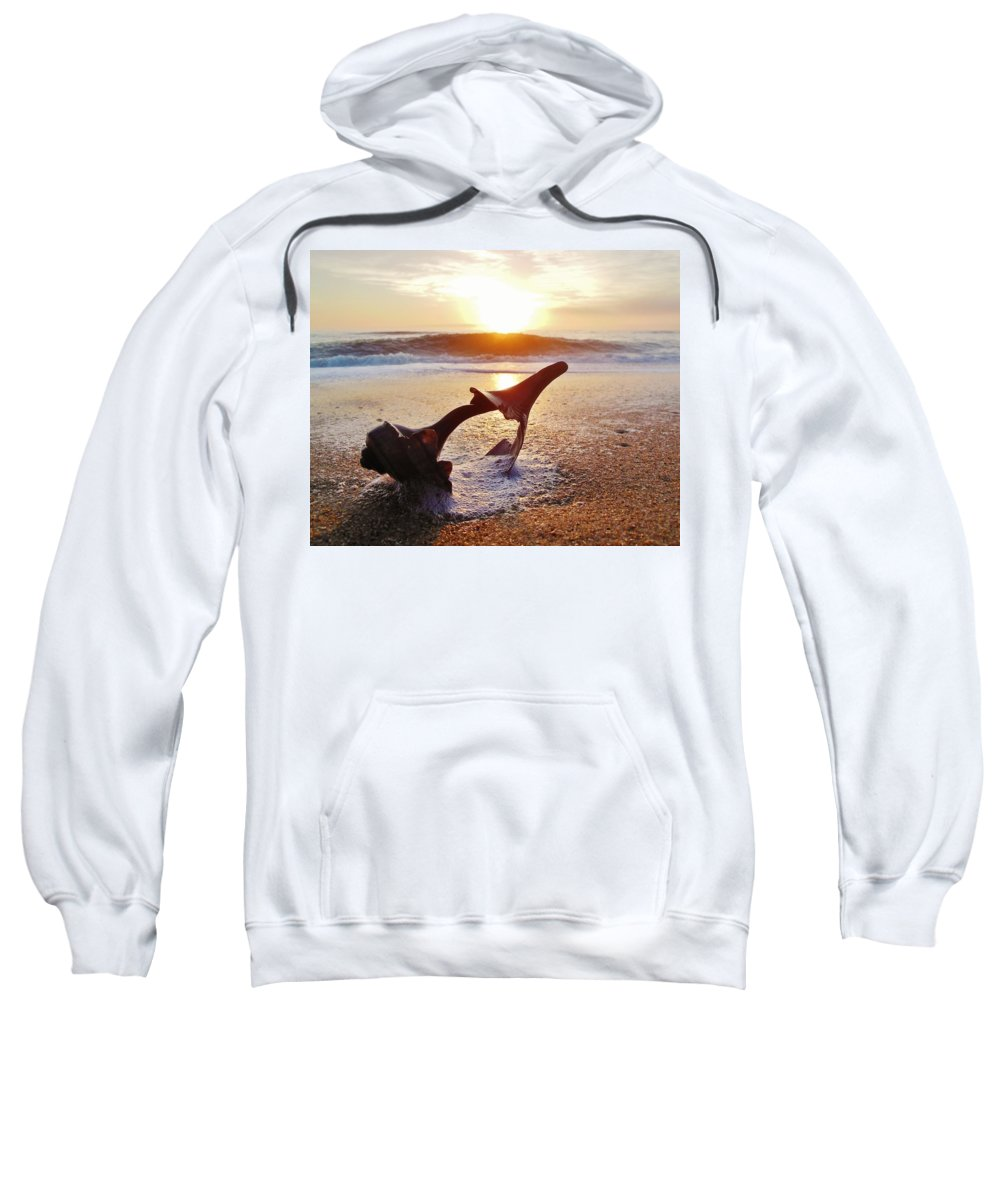 Mark Lemmon Cape Hatteras Nc The Outer Banks Photographer Subjects From Sunrise Sweatshirt featuring the photograph Washed Up And Weathered 5 12/5 by Mark Lemmon