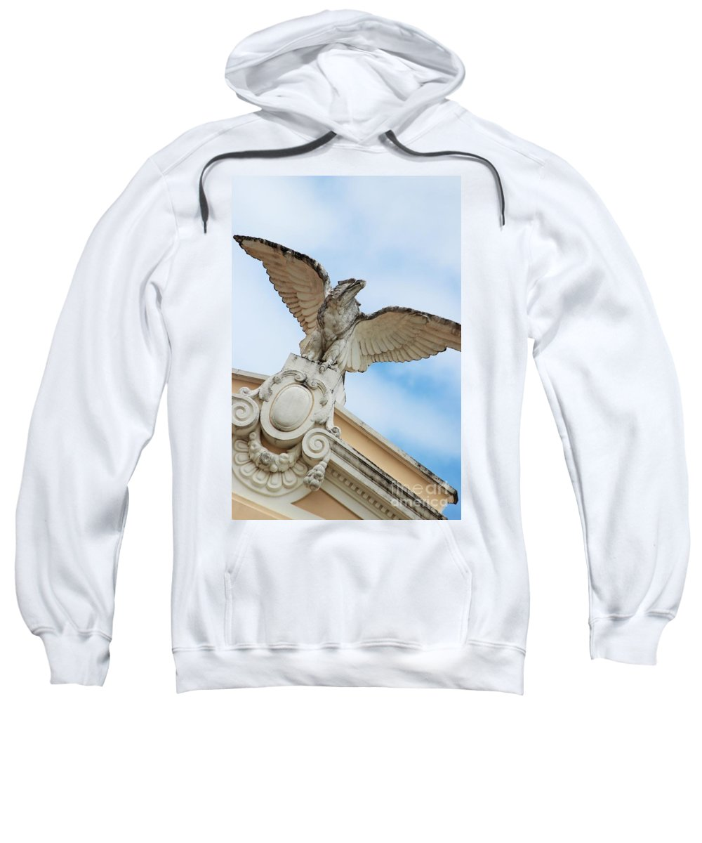 Eagle Sweatshirt featuring the photograph Watchful Eagle by Stephanie Guinn
