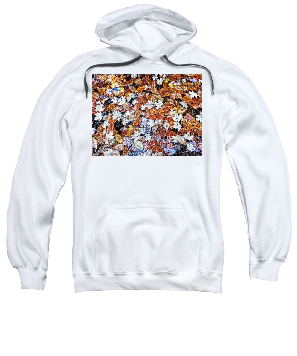 Upper Peninsula Sweatshirt featuring the photograph Wet Autumn Leaves by Kathryn Lund Johnson