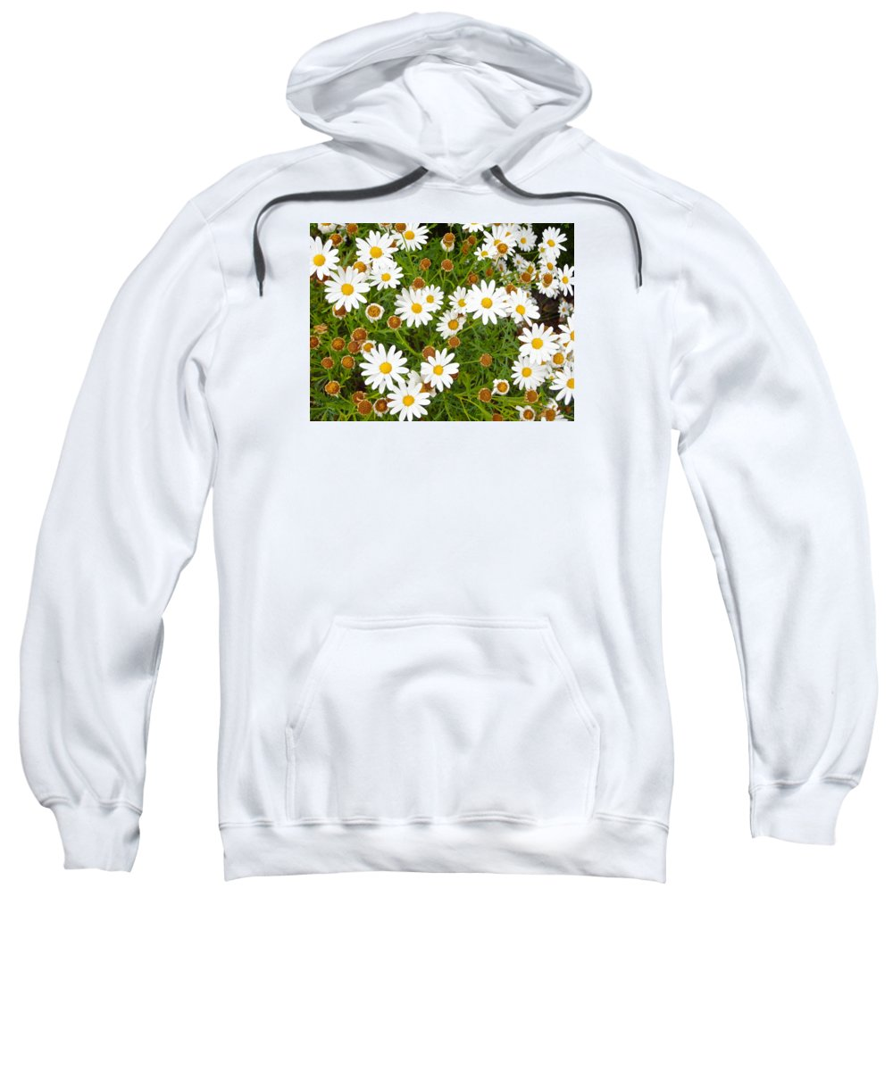White Sweatshirt featuring the photograph When I See Them I Am Reminded Of Your Love by Esther Wilhelm Pridgen
