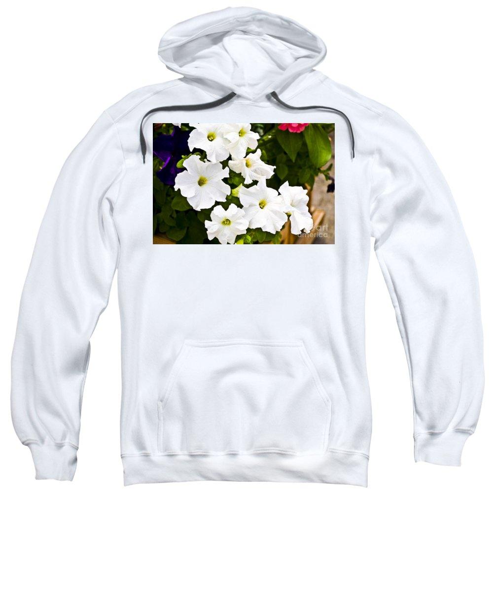 Petunia Sweatshirt featuring the photograph White Petunias by Flamingo Graphix John Ellis