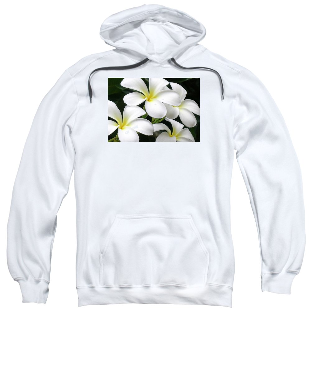 Hawaii Iphone Cases Sweatshirt featuring the photograph White Plumeria by James Temple