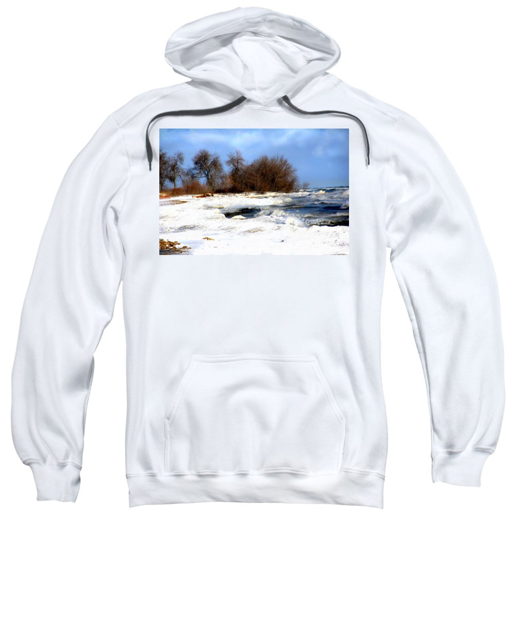 Landscape Sweatshirt featuring the photograph Winter Beauty by Debbie Nobile