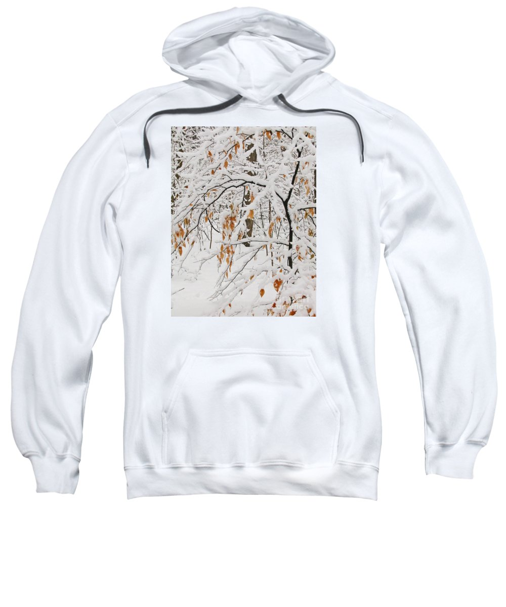 Winter Sweatshirt featuring the photograph Winter Branches by Ann Horn