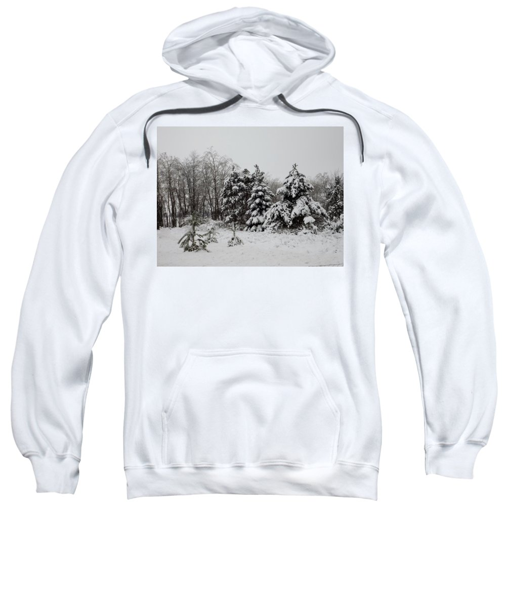 Snow Sweatshirt featuring the photograph Winter Forest by Linda Kerkau