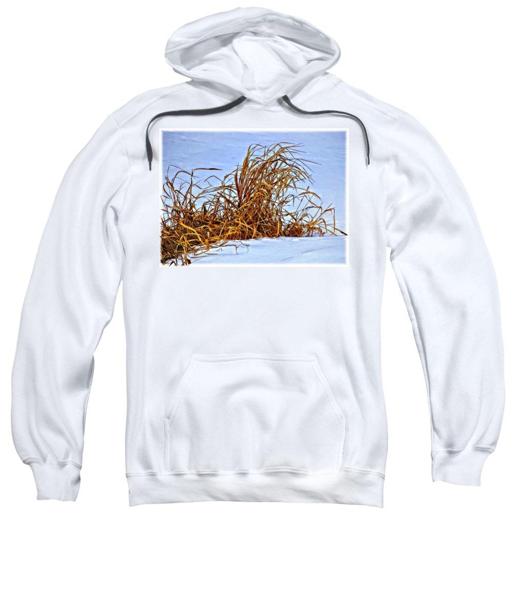Winter Sweatshirt featuring the photograph Winter Grasses II by Steve Harrington
