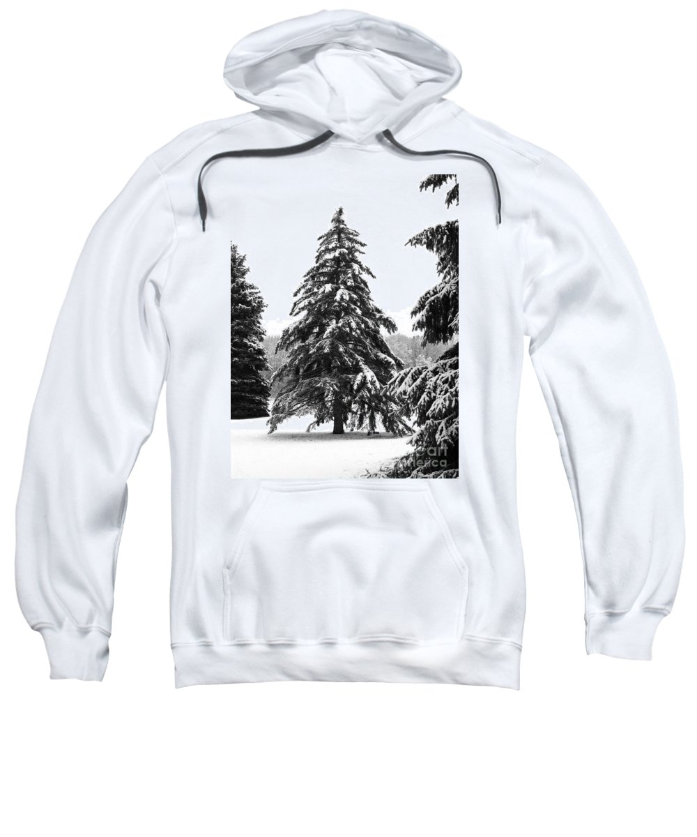 Winter Sweatshirt featuring the photograph Winter Pines by Ann Horn