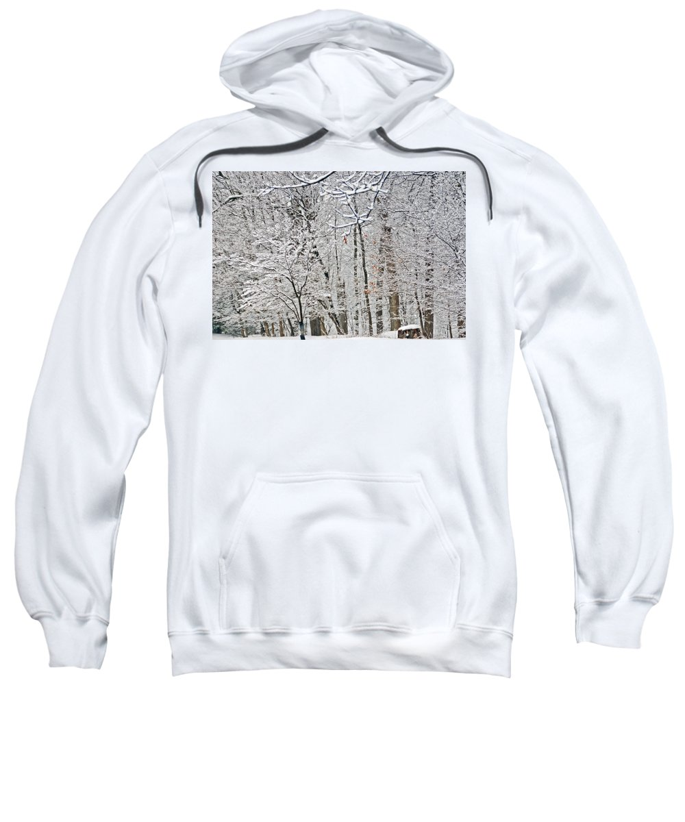 Landscape Sweatshirt featuring the photograph Winter White Trees by Aimee L Maher ALM GALLERY