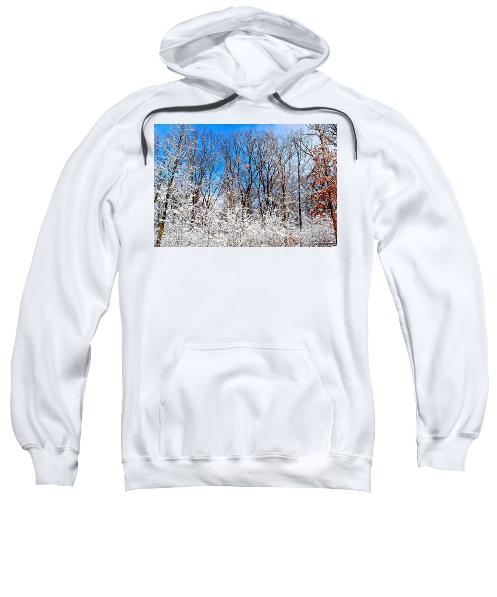 Winter Sweatshirt featuring the photograph Winter Wonderland by Frozen in Time Fine Art Photography