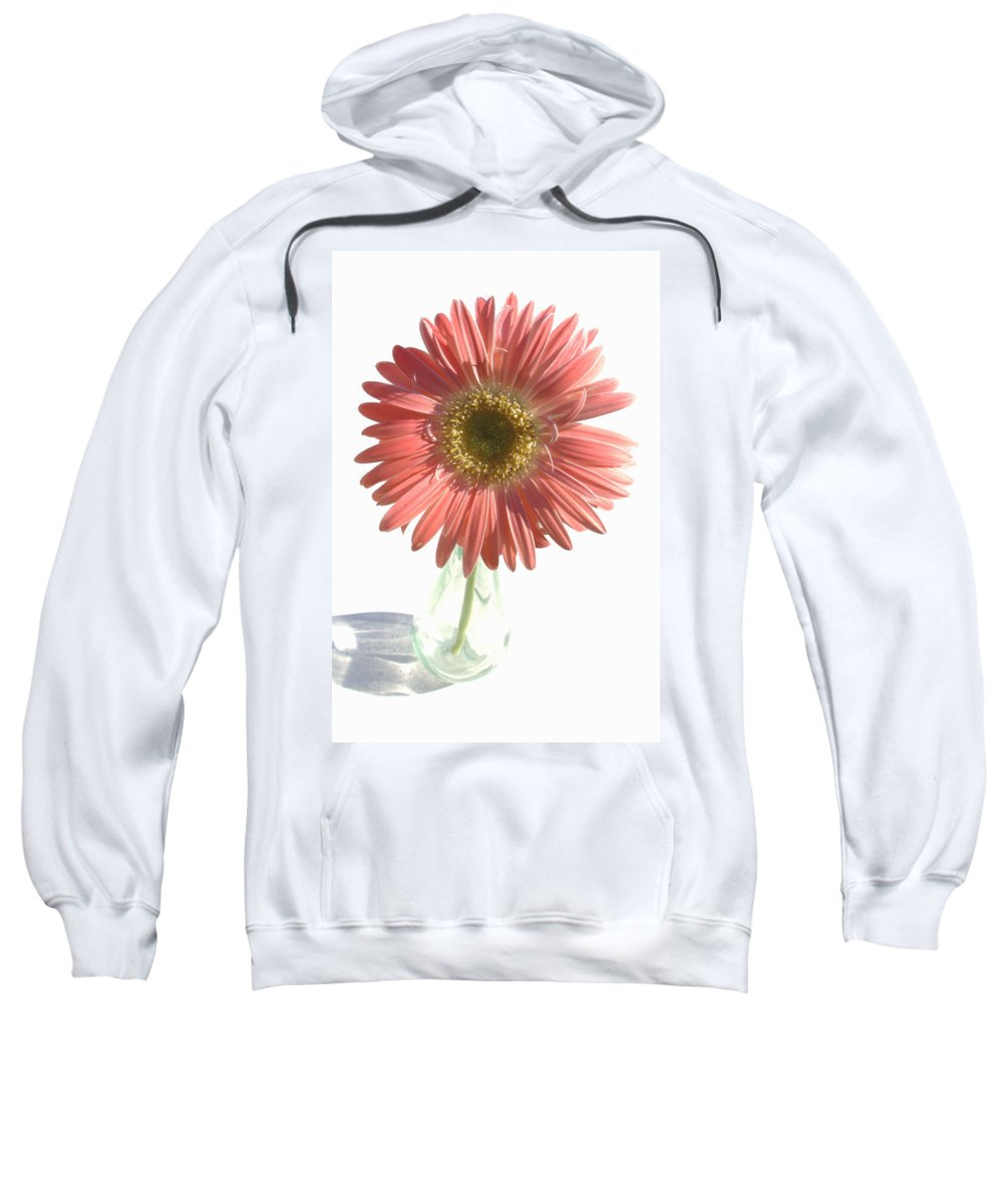 Gerbera Photographs Photographs Photographs Sweatshirt featuring the photograph 0653a1-2 by Kimberlie Gerner