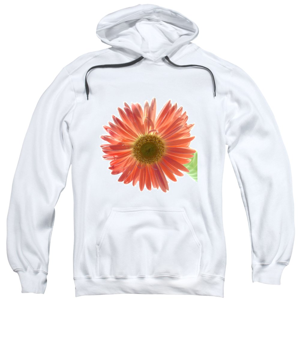 Gerbera Photographs Photographs Photographs Sweatshirt featuring the photograph 0654a-5 by Kimberlie Gerner