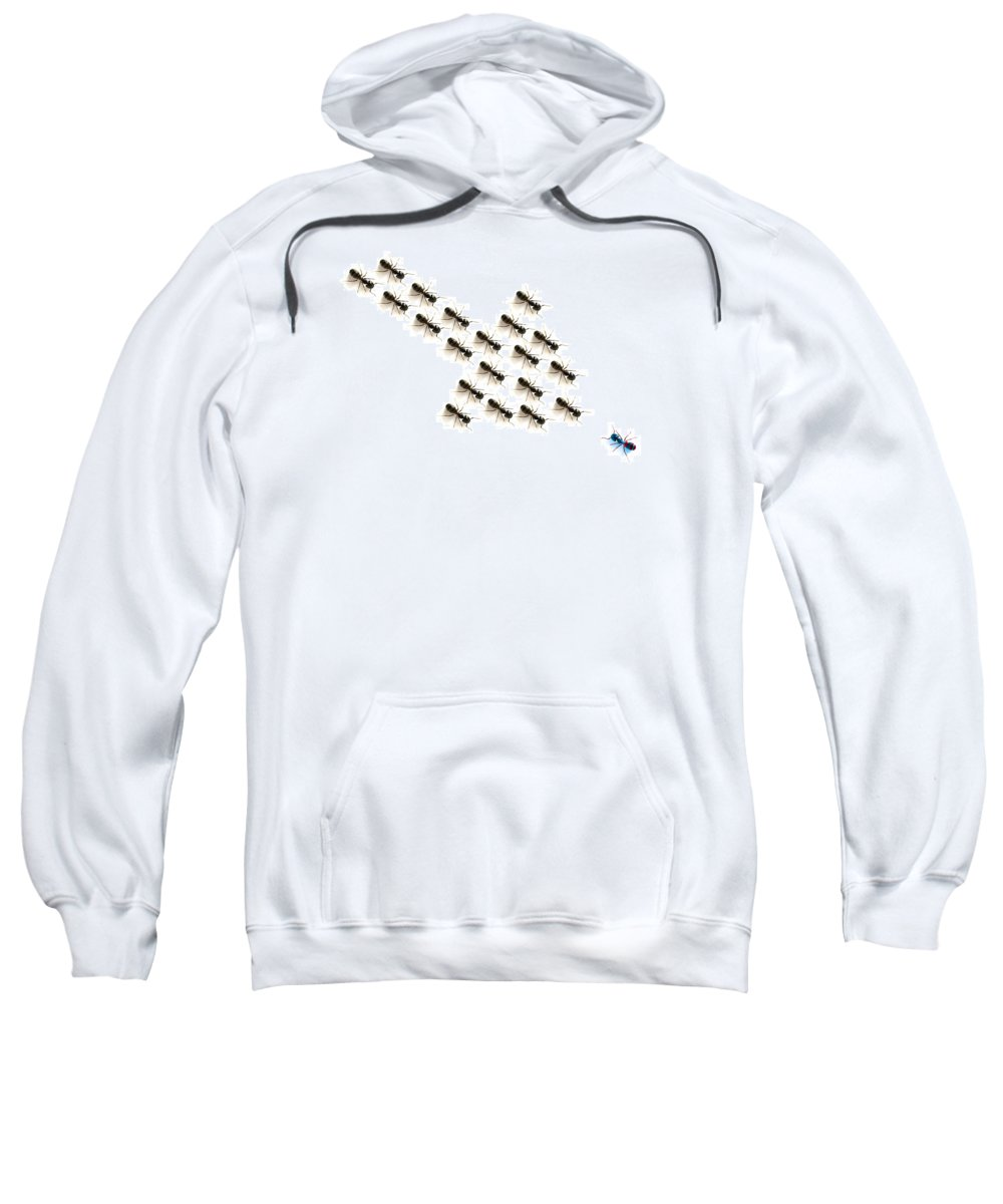 Arrow Sweatshirt featuring the photograph Ants, Forming An Arrow by Chris Knorr