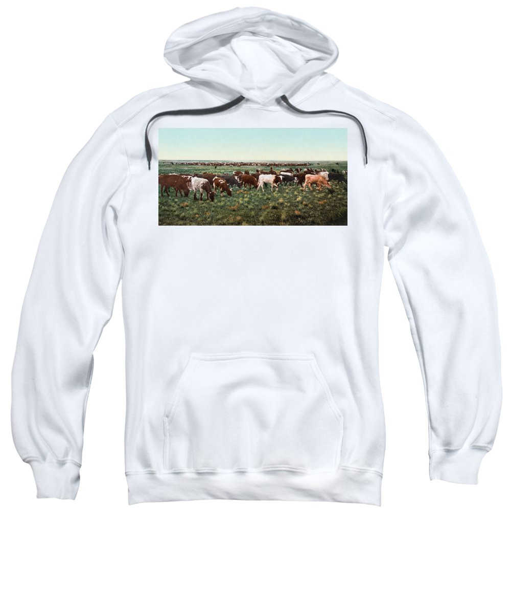 1890s Sweatshirt featuring the photograph Colorado: Round Up by Granger