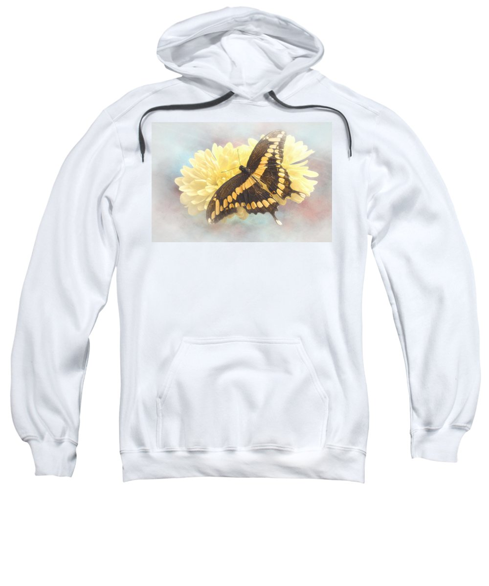 Giant Sweatshirt featuring the photograph Grunge Giant Swallowtail by Rudy Umans