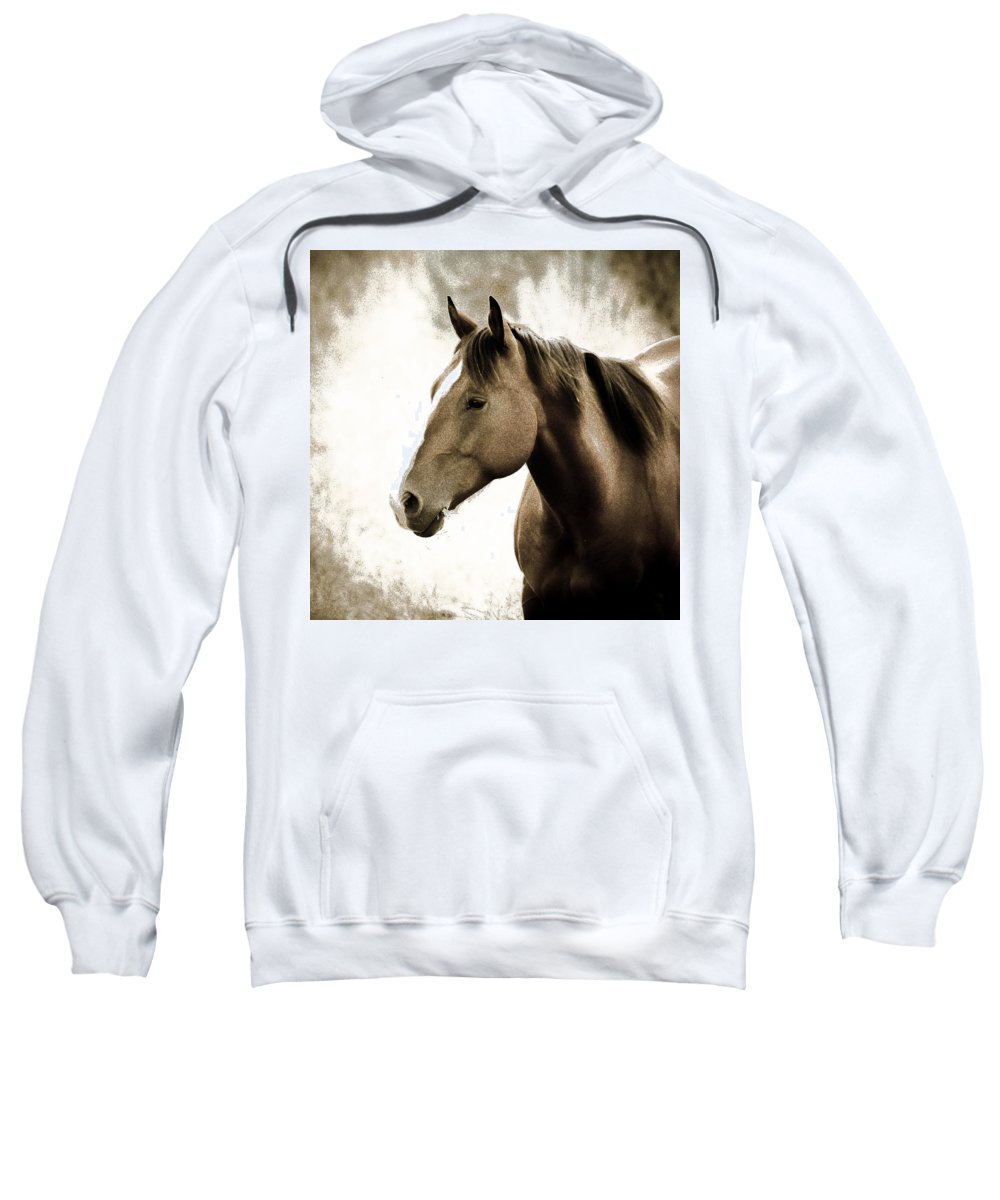 Horses Sweatshirt featuring the photograph Horse by Steve McKinzie