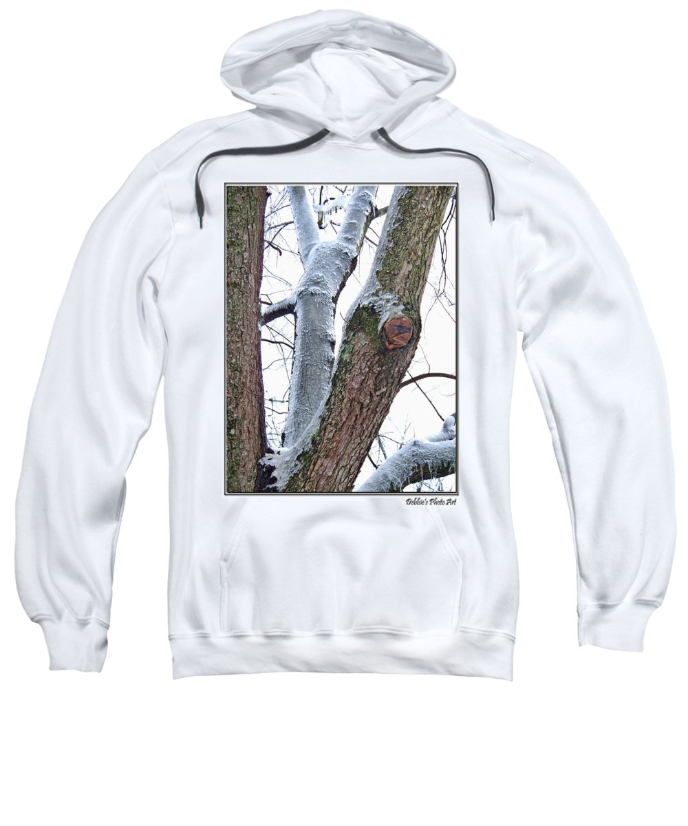 Nature Sweatshirt featuring the photograph Icy View by Debbie Portwood
