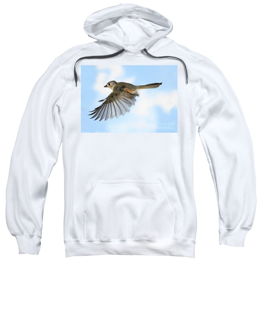 Songbirds Sweatshirt featuring the photograph Tufted Titmouse In Flight by Ted Kinsman