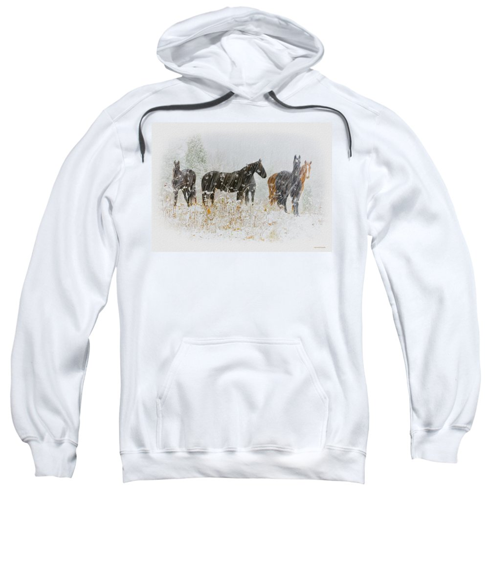 Ron Jones Sweatshirt featuring the photograph Winter Horses by Ron Jones
