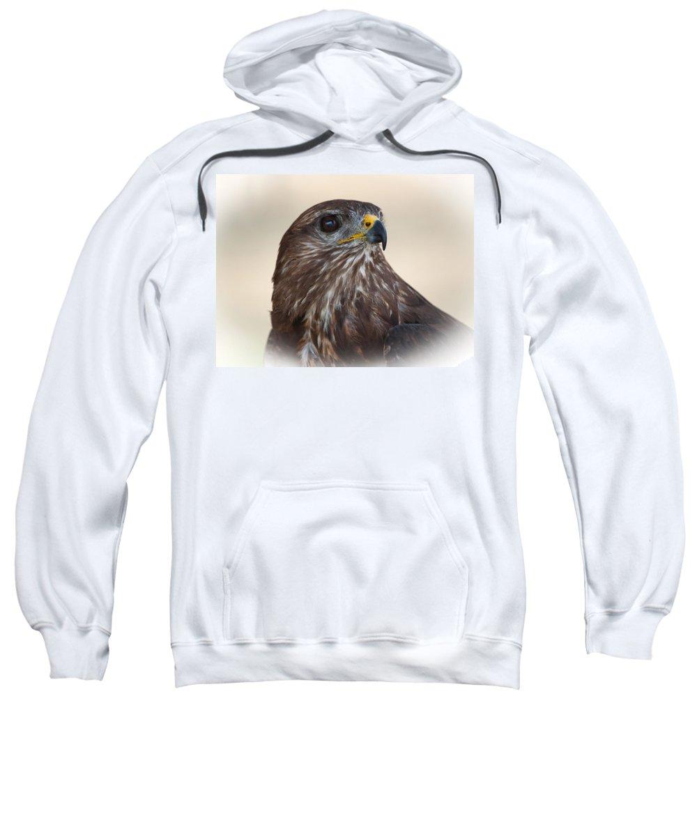 Hawk Sweatshirt featuring the photograph Hawk by Daniel Csoka