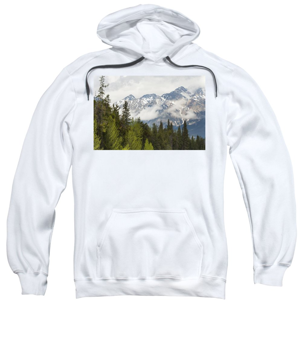 Beauty In Nature Sweatshirt featuring the photograph A Forest And The Rocky Mountains by Keith Levit