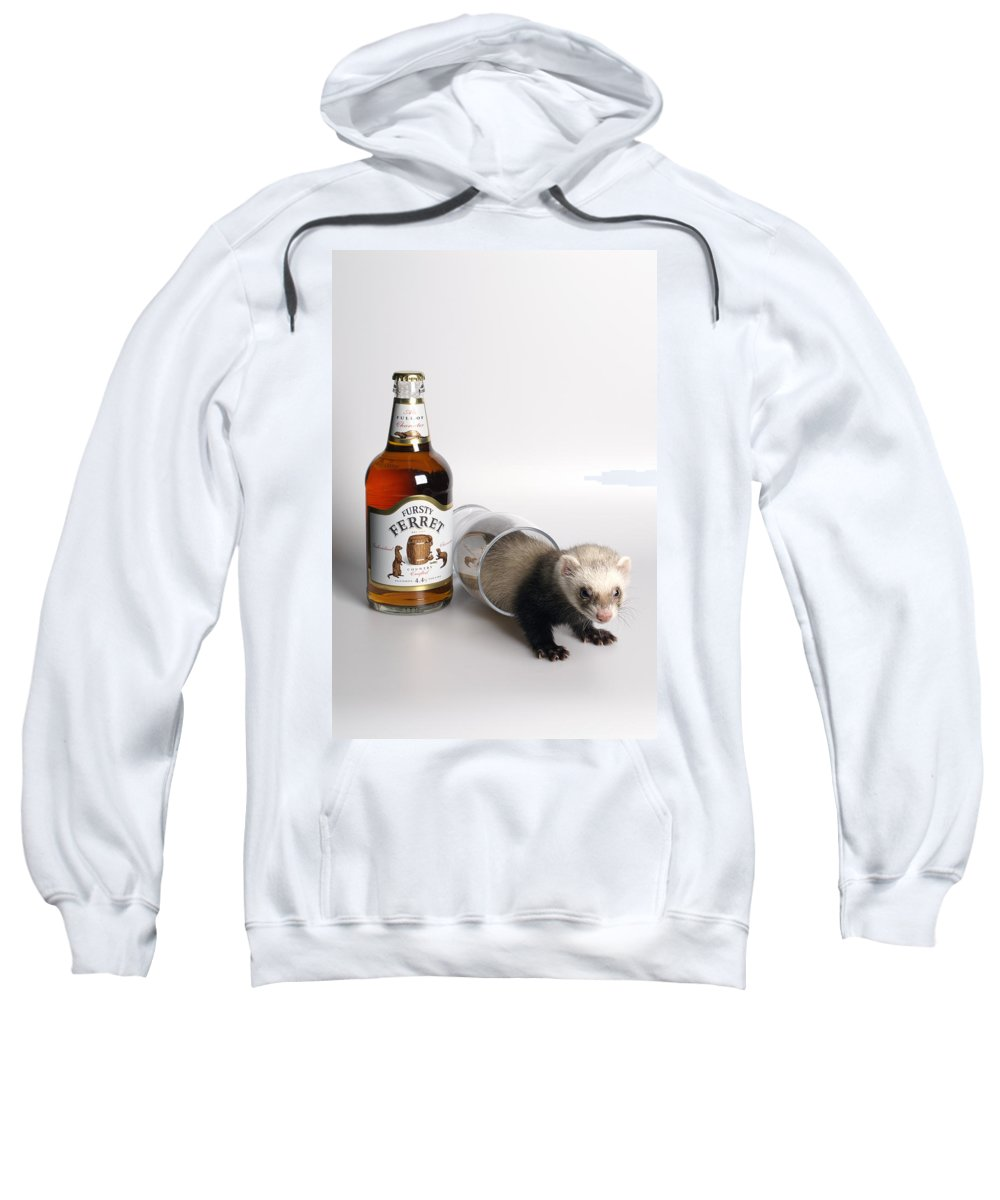 Beer Sweatshirt featuring the photograph A Glass Of Fursty Ferret by Howard Kennedy