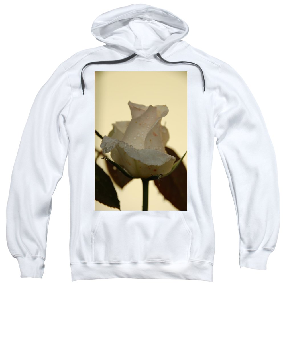 Rose Sweatshirt featuring the photograph A Single White Rose by Randy J Heath