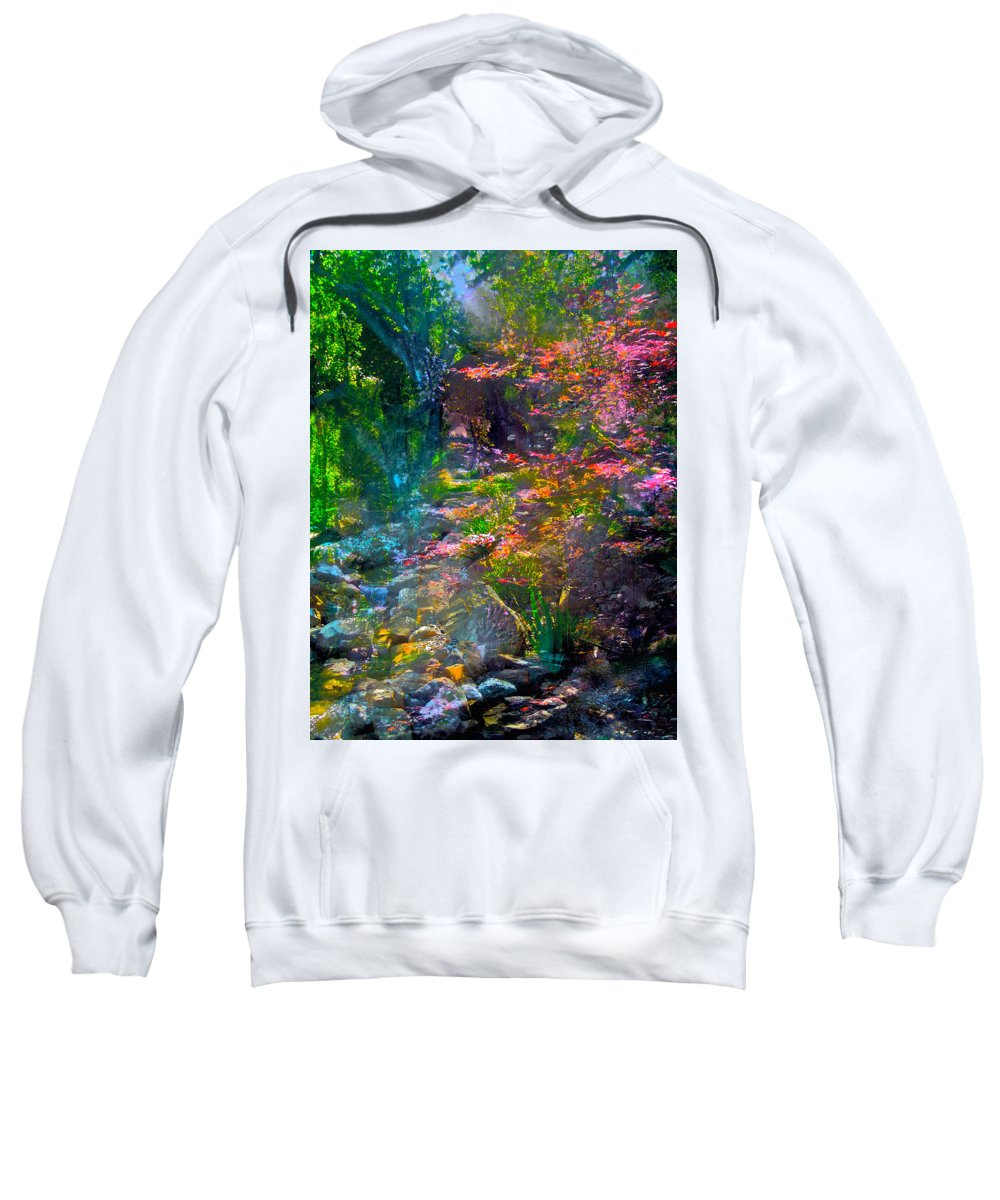 Abstract Sweatshirt featuring the Abstract 86 by Pamela Cooper