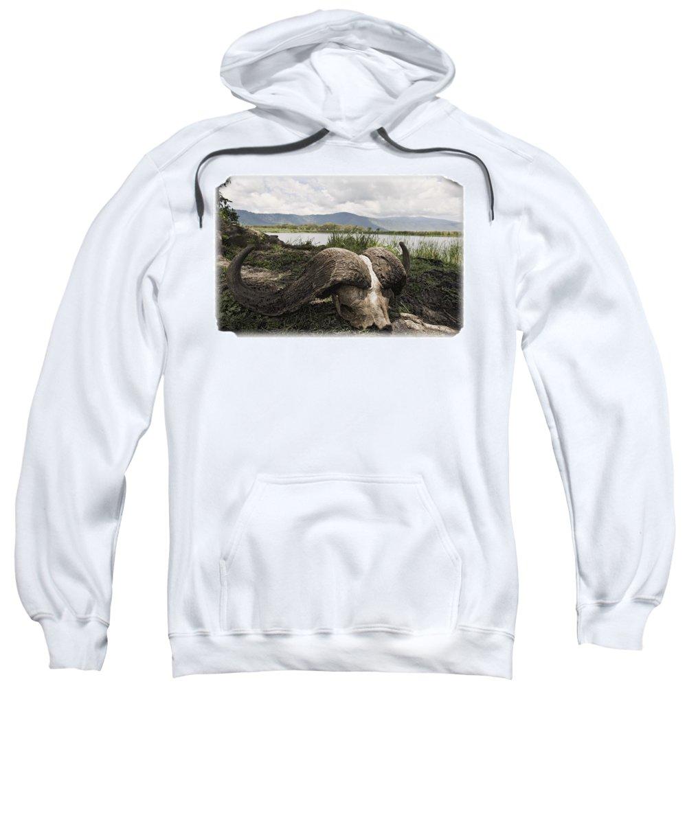 African Sweatshirt featuring the photograph African Cape Buffalo Skull, Ngorongoro by Carson Ganci