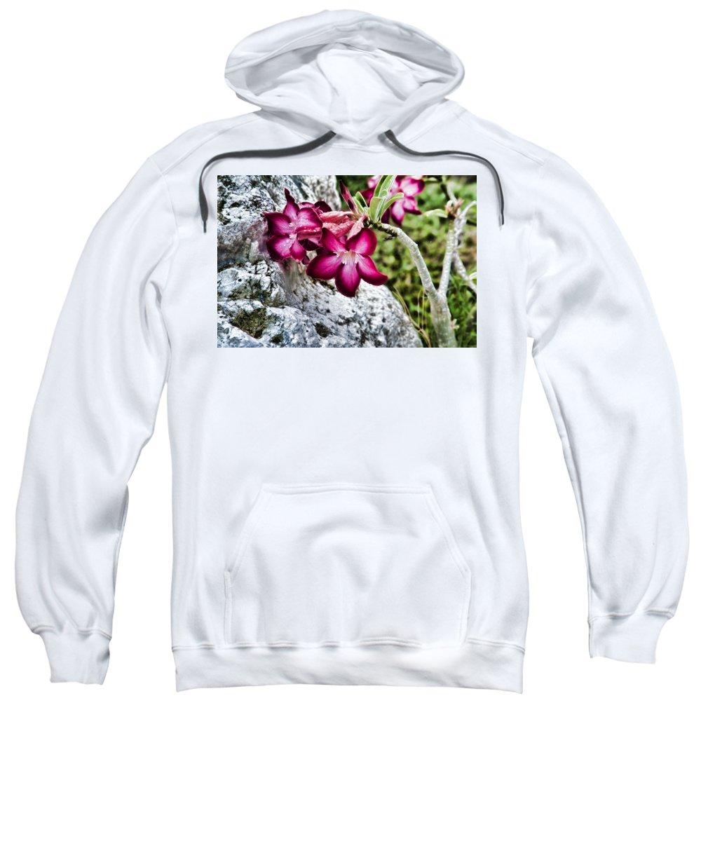 Jamaica Sweatshirt featuring the photograph Beautiful Rock by Sheri Bartoszek