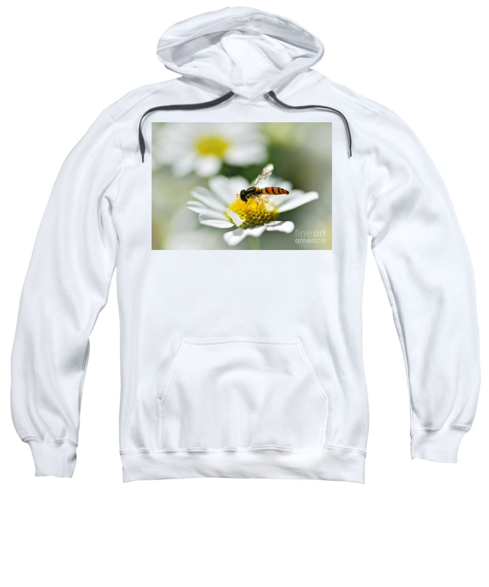 Photography Sweatshirt featuring the photograph Bee With Rainbow Wings by Kaye Menner