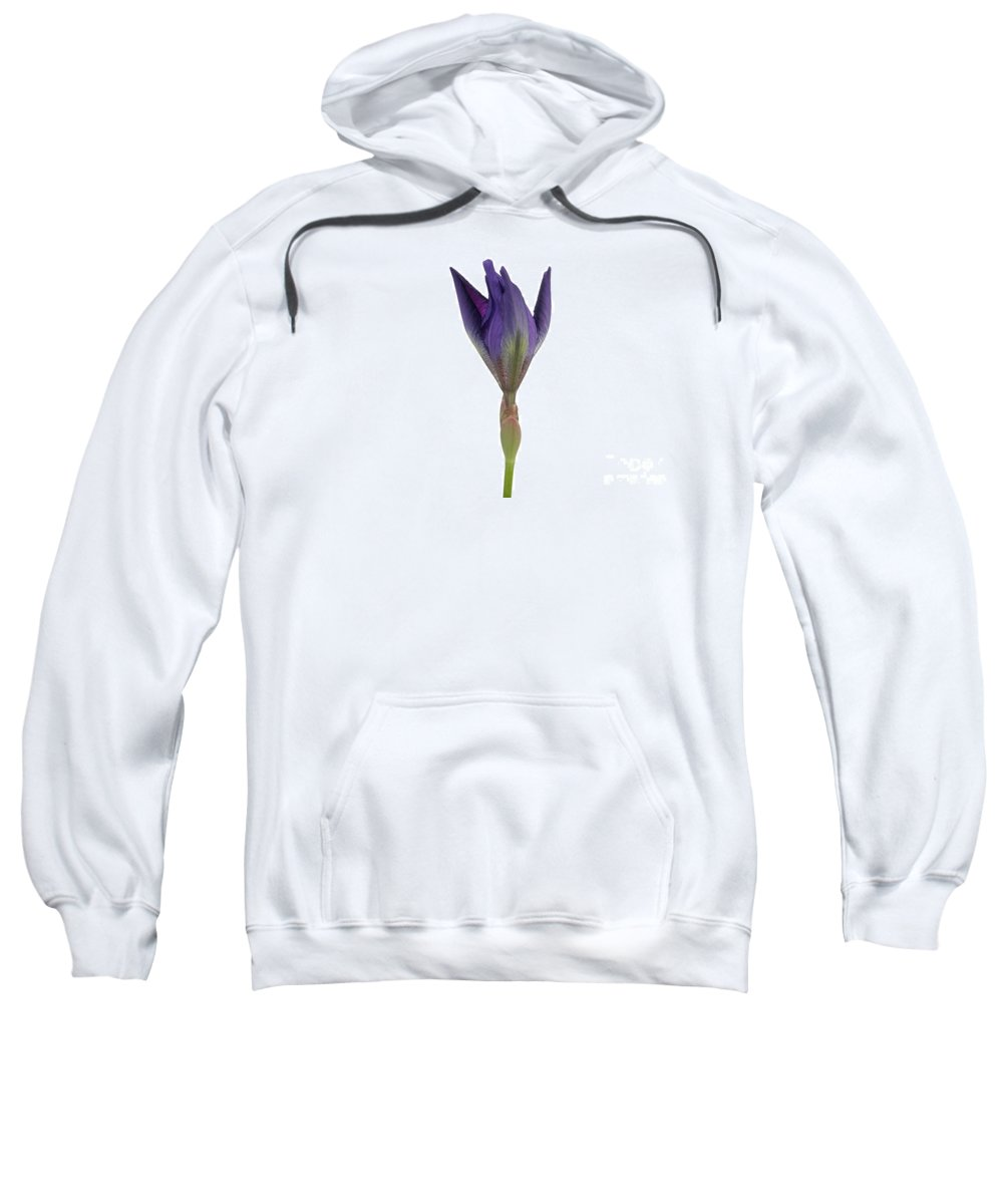 Flora Sweatshirt featuring the photograph Blue Iris Blooming by Ted Kinsman