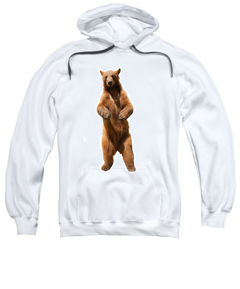 Approaching Sweatshirt featuring the photograph Brown Bear Ursus Arctos by Don Hammond