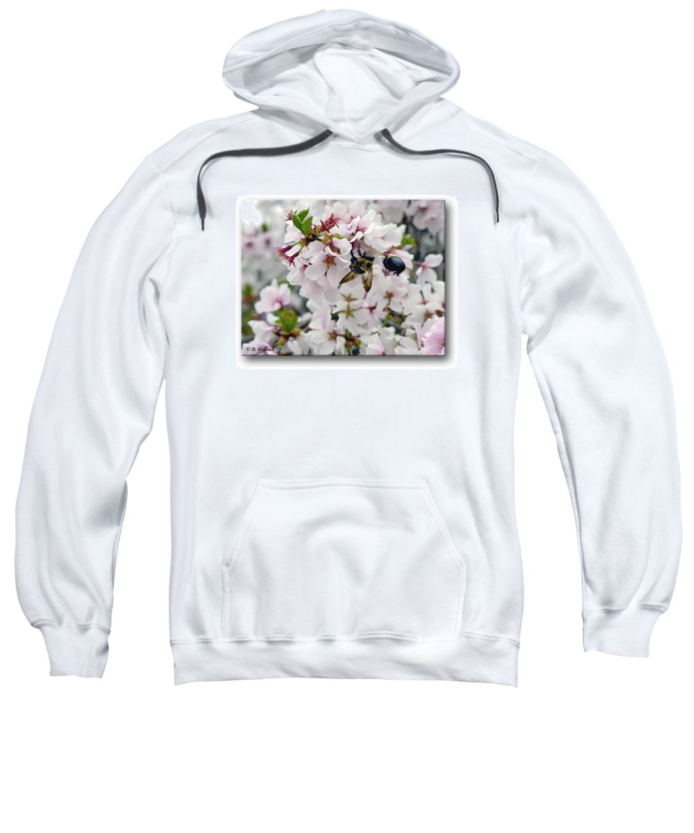 2d Sweatshirt featuring the photograph Busy Bees by Brian Wallace