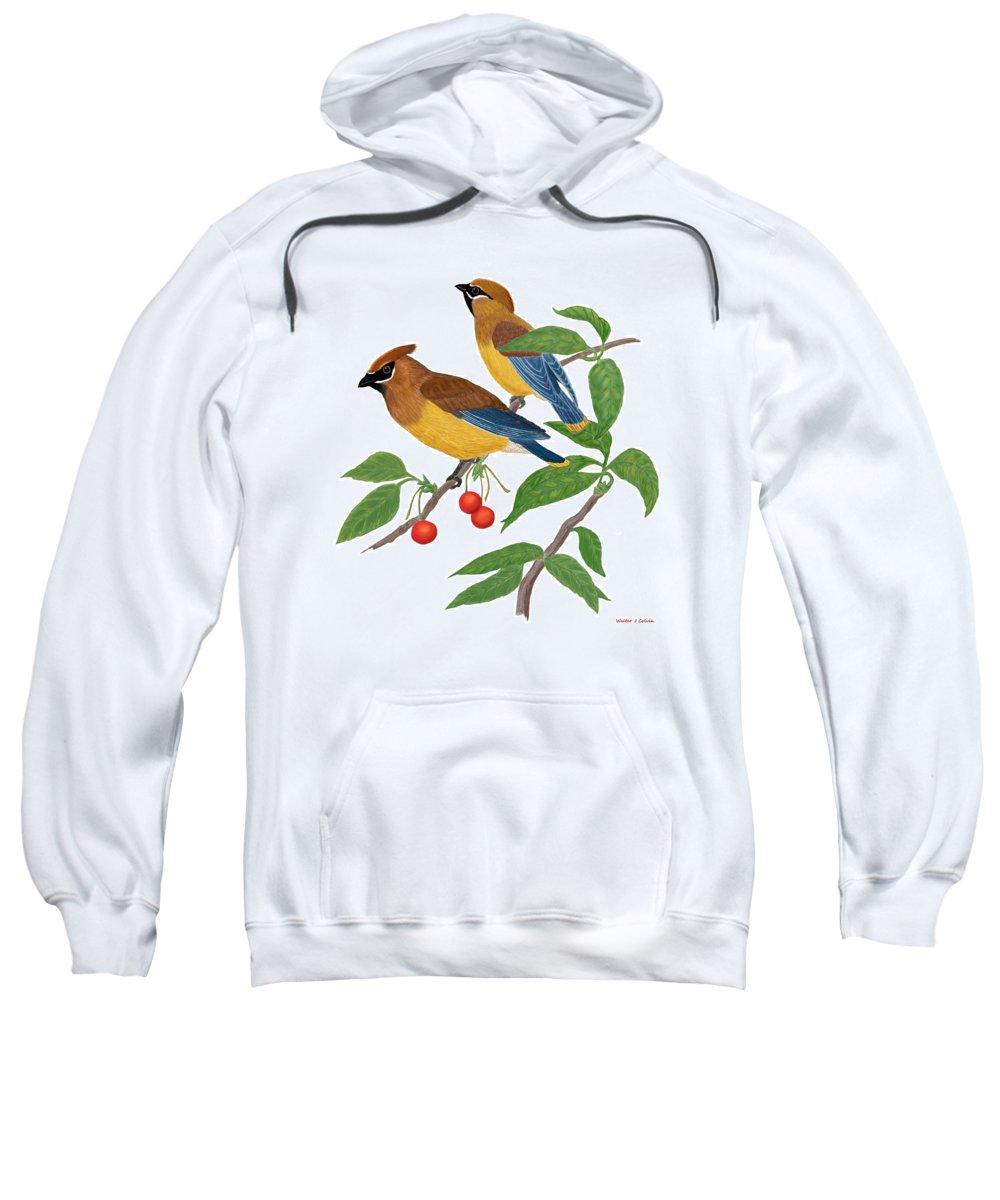 Cedar Waxwing Sweatshirt featuring the digital art Cedar Waxwing by Walter Colvin
