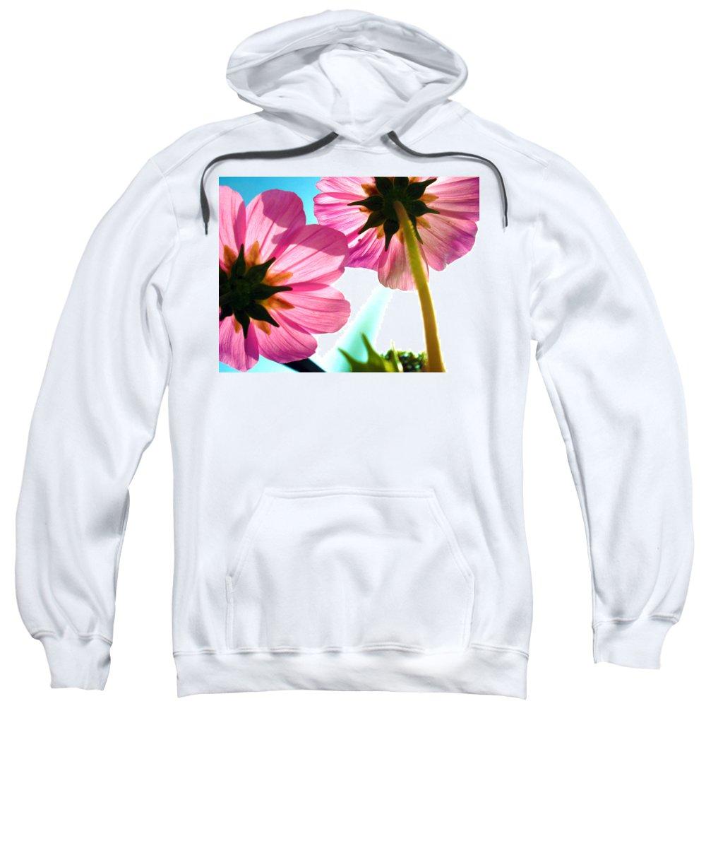 Flower Sweatshirt featuring the photograph Cosmia Flower Twins by Sumit Mehndiratta