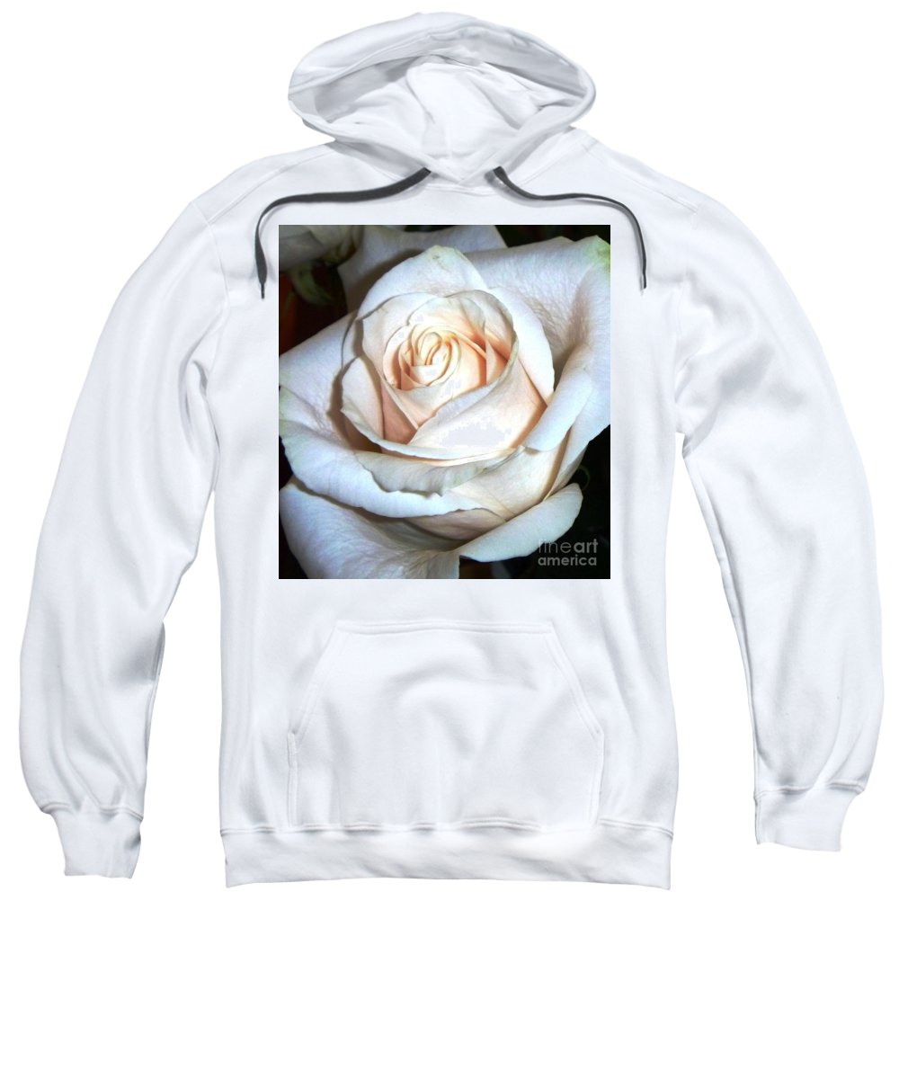Creamy Rose Sweatshirt featuring the photograph Creamy Rose IIi by Alys Caviness-Gober