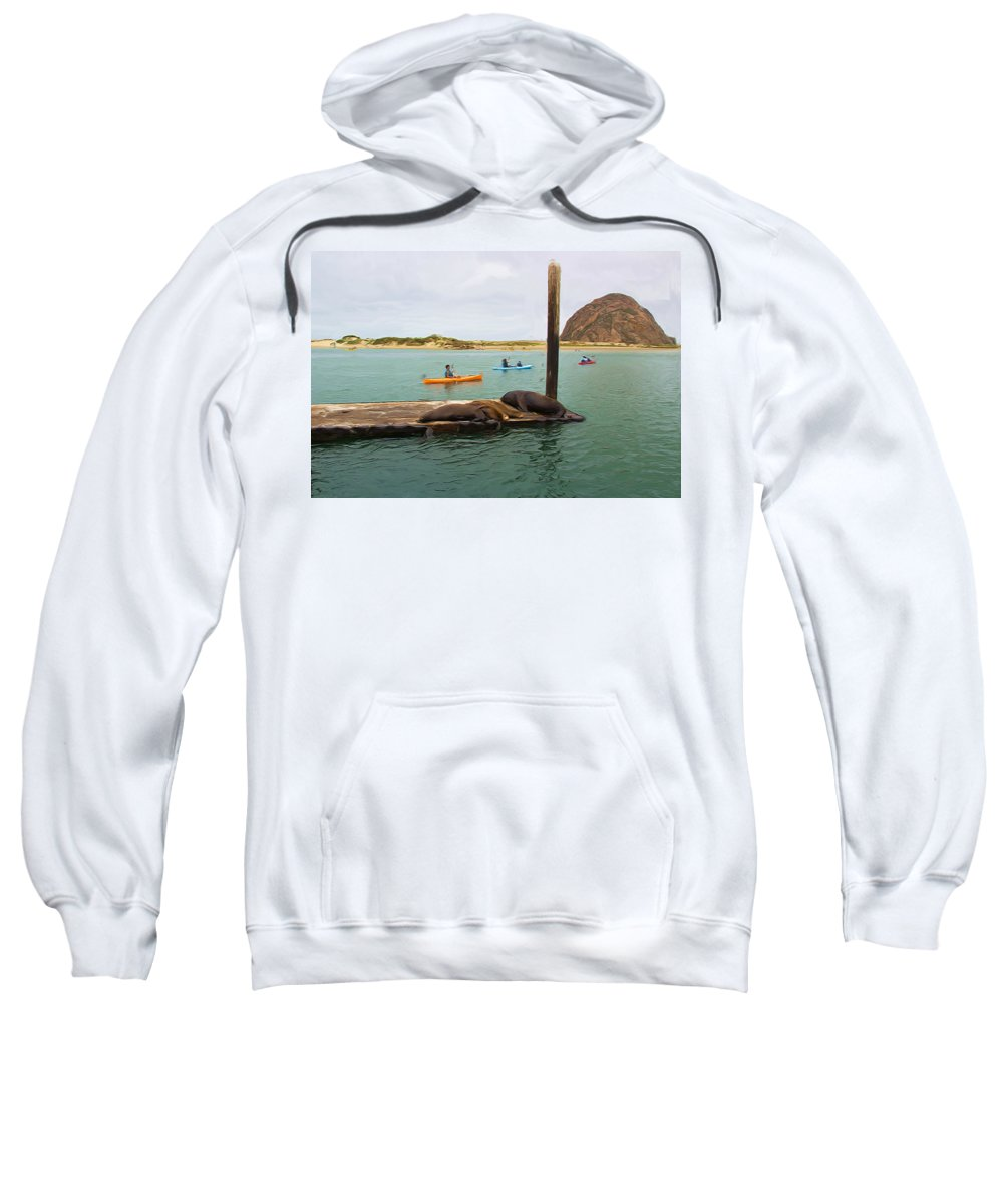 Morro Rock Sweatshirt featuring the photograph Curious About Sea Lions by Heidi Smith