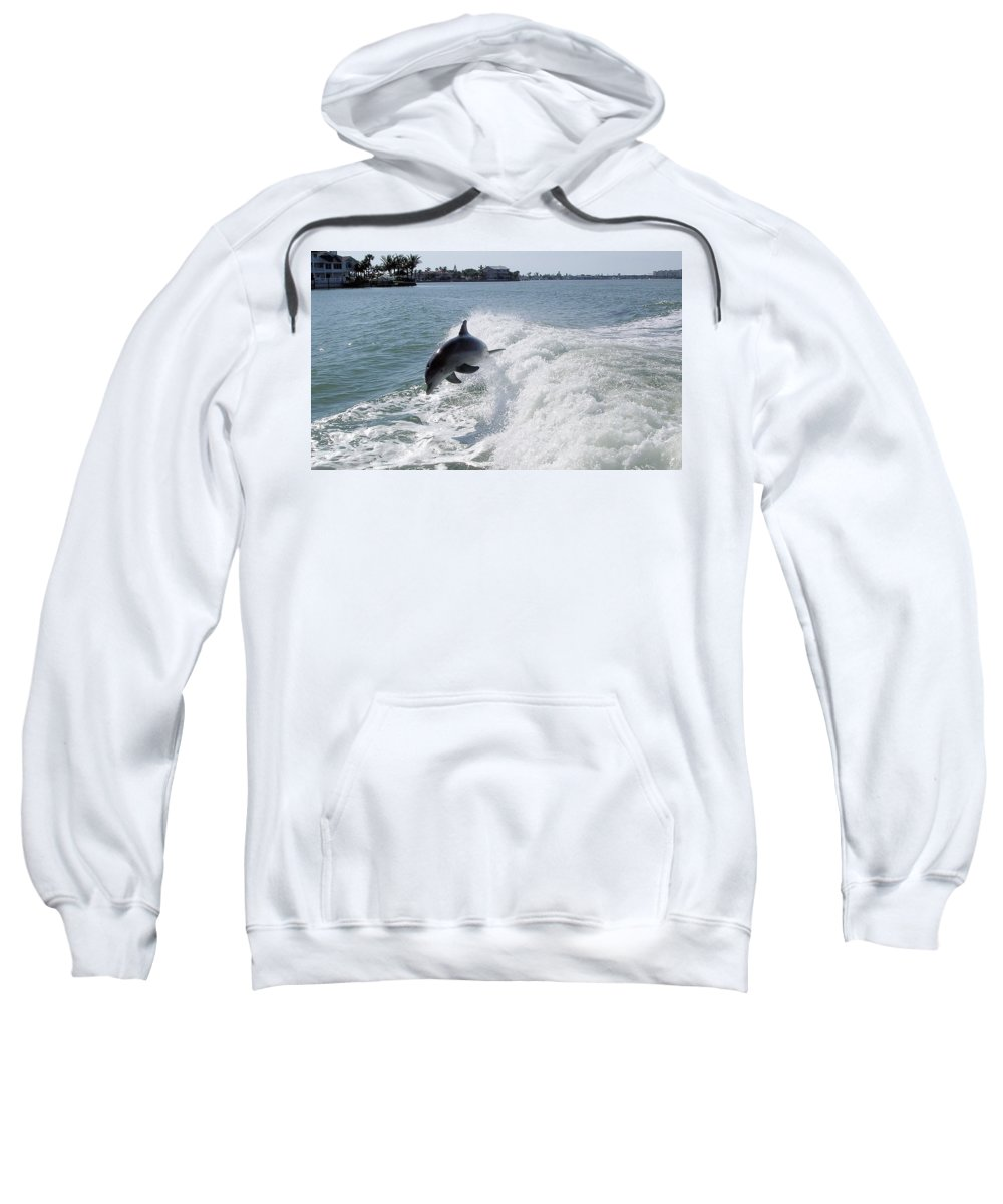Dolphin Sweatshirt featuring the photograph Dolphin Playing by Mickey Krause
