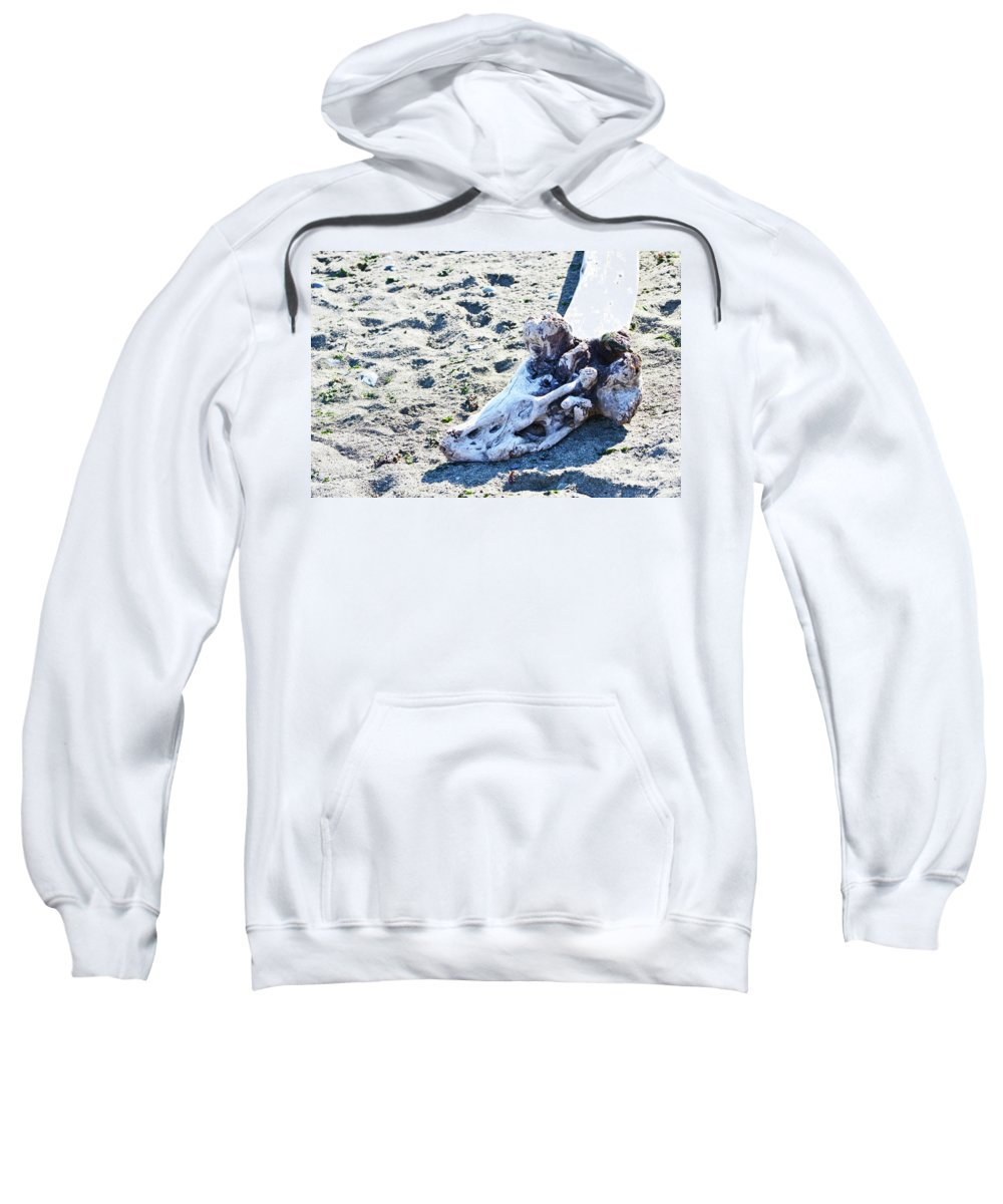 British Columbia Sweatshirt featuring the photograph Driftwood by Traci Cottingham