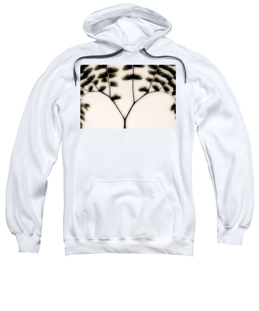 Dried Ferns Sweatshirt featuring the mixed media Eastern Influence Fern by Marie Jamieson