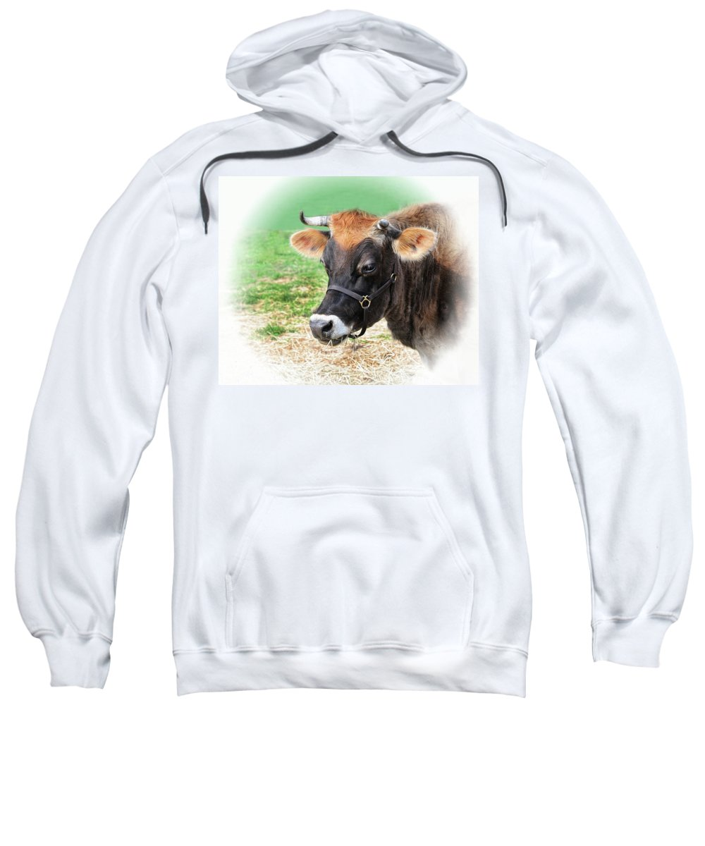 Cow Sweatshirt featuring the photograph Elsie by Dave Mills