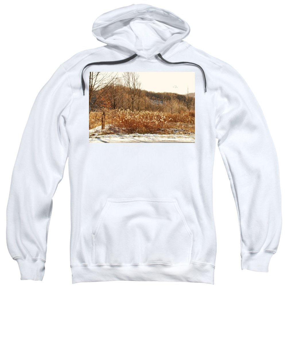 Field Sweatshirt featuring the photograph Even Now By The Gate by Lois Bryan